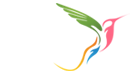 Gabfire Boutique Design Agency